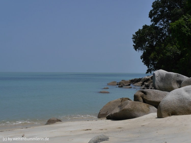 monkey_beach_06